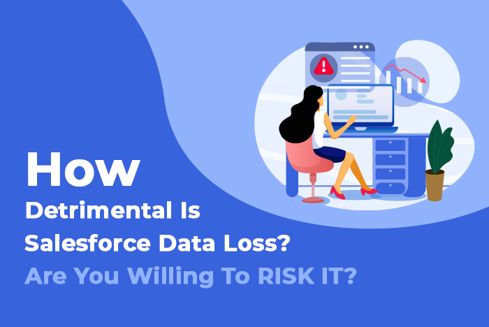 How Detrimental Is Salesforce Data Loss? Are You Willing To RISK IT?