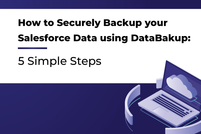 How to Securely Backup your Salesforce Data using DataBakup: 5 Simple Steps