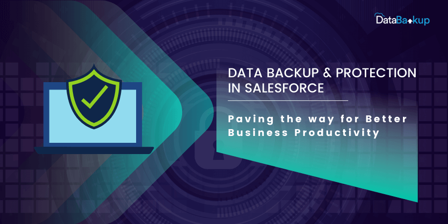 Data Backup & Protection in Salesforce